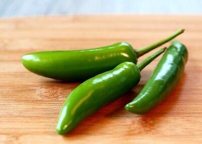Mexican Pepper - 40++ Serrano Chili Hot Pepper Seeds NON-GMO Mexican