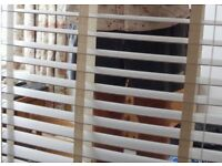 2 Window Blinds White Horizontal Wooden Hilarys Blind Excellent Condition