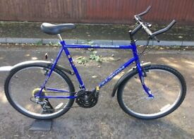 Raleigh Mission Mountain Bike Bicycle Size Large 18 Speed Gears