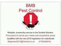 Pest control (moles, rats,rabbits,birds,etc)