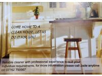 Reliable cleaner available Newbury and surrounding areas