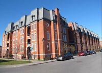 Condo - à vendre - Le Plateau-Mont-Royal - 25643942