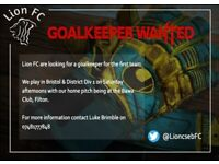 Goalkeeper Wanted Lion FC