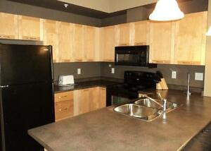 Clareview Court - Furnished 1 Bedroom Edmonton Edmonton Area image 4