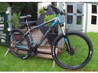 mens giant talon mountain bike