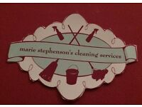 cleaner/ironing services