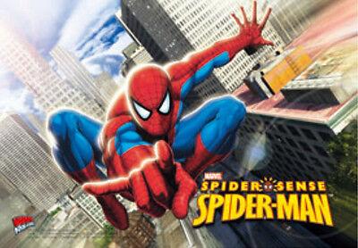 Spider-man Spider Sense - SpiderMan 3D Lenticular Poster- 10x14 -Official Marvel