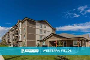 Pet-Friendly 2 Bedroom 2 Bathroom Apartment with in-suite...