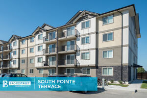 NEW Pet Friendly 2 Bedroom Apartment w/ In-suite Laundry SW WPG