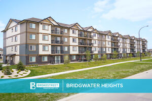 Pet-Friendly 3 Bedroom 1 Bathroom Apartment with in-suite...