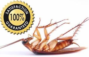 PEST CONTROL  SYDNEY WIDE  ALL HOUSES $119 All units $90 Bankstown Bankstown Area Preview