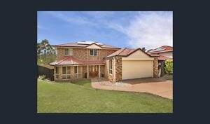 Room for rent In Carindale Carindale Brisbane South East Preview
