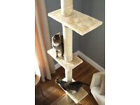 Cat Tree floor-to-ceiling NEW