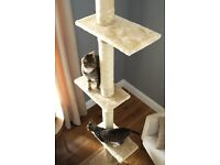 Floor To Ceiling Cat Tree - Brand New