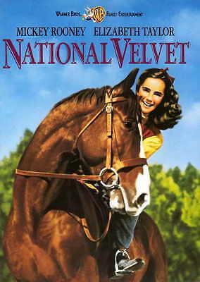 NATIONAL VELVET Movie POSTER 27x40 Elizabeth Taylor Mickey Rooney Arthur