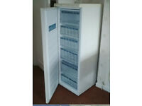 LEC tall upright Freezer