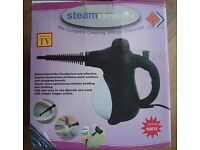 Steam Cleaner for the Home