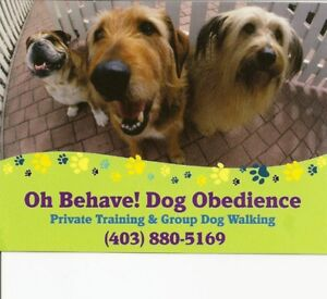 Dog Walking Services - Airdrie
