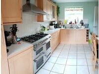 Complete kitchen with fridge freezer, dishwasher and cooking range oven