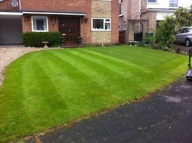 Gardening, painting, car washing, dog walking - Billingham, Norton, Stockton, Middlesbrough, Wynyard