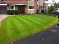 Gardening, painting, car washing, dog walking - Billingham, Norton, Stockton, Middlesbrough, Wynyard