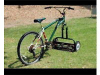 Wanted Ride On lawn Mower