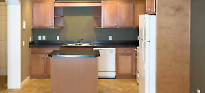 FIRST MONTH FREE | 2 Bedroom Apartment | East Regina