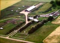 Excellent HORSE BOARDING Facility * Special Price *