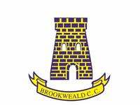 Brookweald CC looking for cricket players 2017