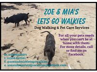 Zoe & Mia's Lets Go Walkies, dog walking and pet sitting (dog walker, pet sitter, cat sitter)