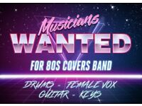 WANTED! Musicians to start an 80s covers band