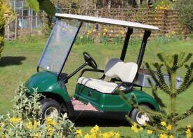Yamama Golf Buggy
