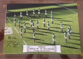 Signed Rory Best Ireland rugby picture