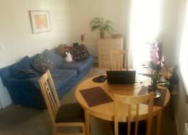 Single room with own shower/wc in modern flat off West Street, £400 inc. bills from 1/12