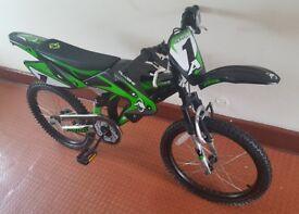 Boys Avigo Bike
