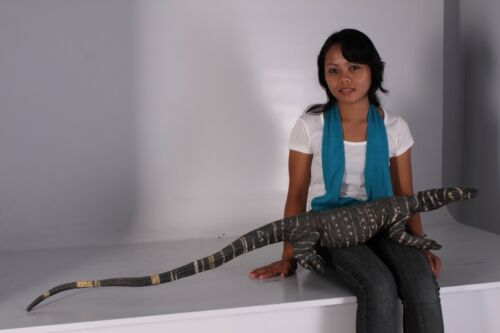 Lace Monitor 4ft.