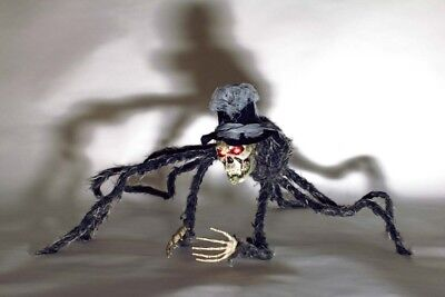 Riesen Spinne Kopfspinne leuchtende Augen Skelett Kopf 70x70 Deko Halloween