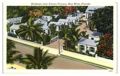 Mid-1900s Bird's-Eye View of Cactus Terrace Motel, Key West, FL Postcard
