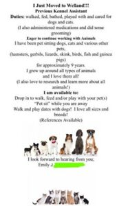 EXPERIENCED PET-SITTER