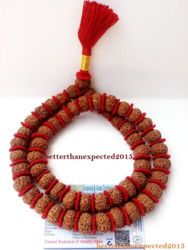 9 Mukhi Rudraksh / Nine Face Rudraksha Mala /Durga Shakti–54 Bead ~Lab Certified