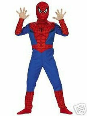 Amazing Spider-Man Peter Parker Standard Halloween Costume Marvel Comics MED 7-8