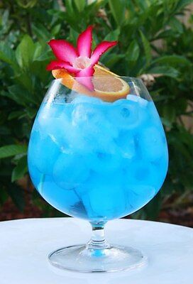 Blue Hawaiian Fragrance Oil Candle/Soap Making Supplies FREE SHIPPING