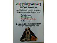 Waggs Devon Dog Walking & Pet care