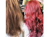 FULLY QUALIFIED (LEVEL 3), INSURED AND EXPERIENCED MOBILE HAIRDRESSER