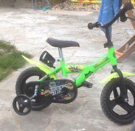 Ninja turtle kids bike