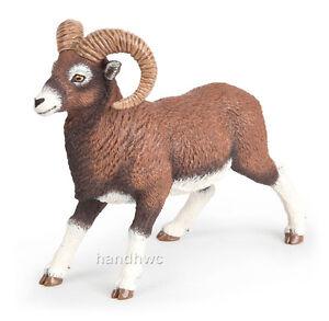 Bighorn Sheep Taxidermy Ebay