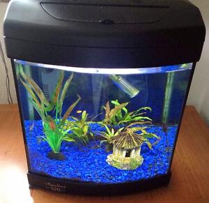 Aqua One Aquastart 320 Tropical Fish Tank Black+ Light, Stingray 5 Filter & Xtra