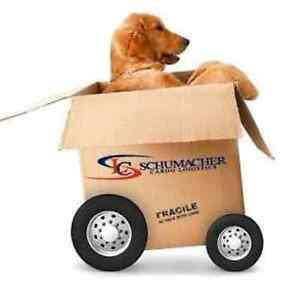 Last Minute or After hour Removalist. 0 Caringbah Sutherland Area Preview