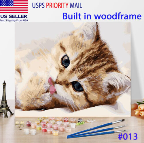 Wooden Framed  DIY Oil Painting Paint by Number Kit for Adults Cute Cat Kitten