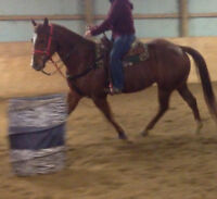 Hot 2 trot barrel racing team has a spot for leasing